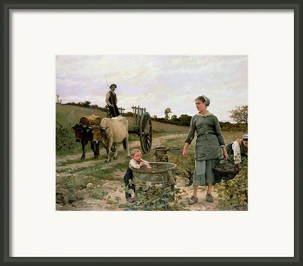 Corner Of A Vineyard Framed Print By Edouard Debat Ponsan