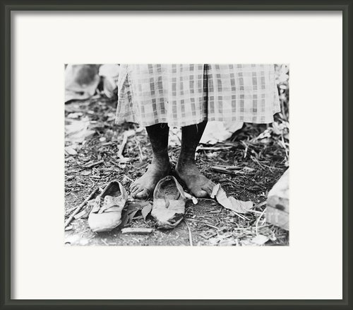 Cotton Picker, 1937 Framed Print By Granger