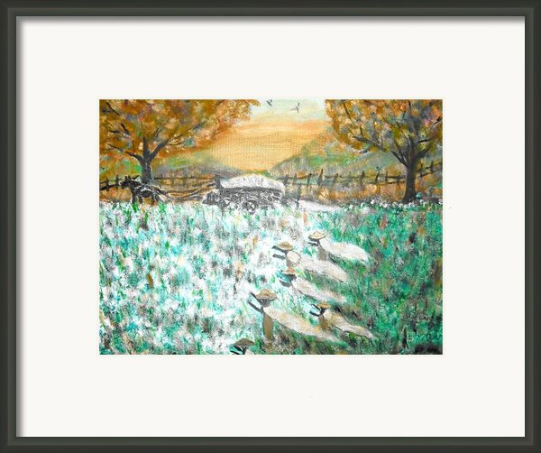 Cotton Pickers Framed Print By Bj Abrams
