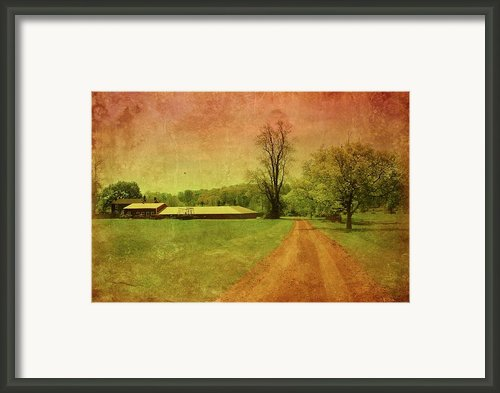 Country Living - Bayonet Farm Framed Print By Angie Mckenzie