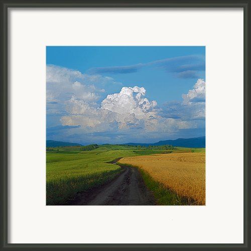 Country Road Framed Print By Pavel  Filatov