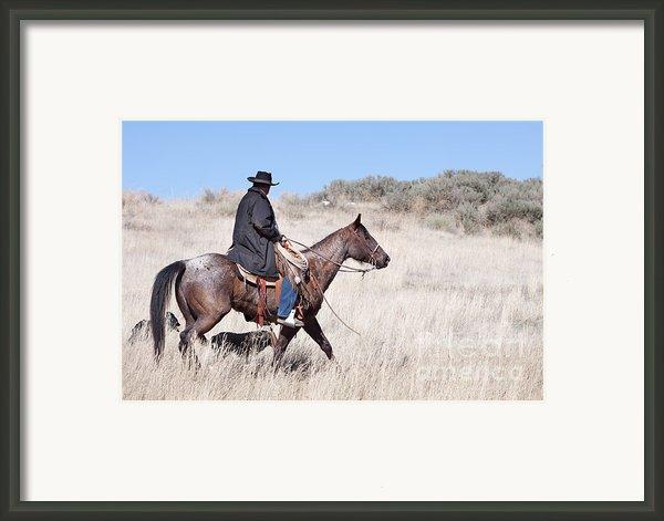 Cowboy On Horseback Framed Print By Cindy Singleton