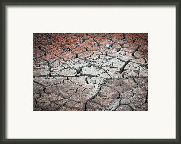 Cracked Earth Framed Print By Athena Mckinzie