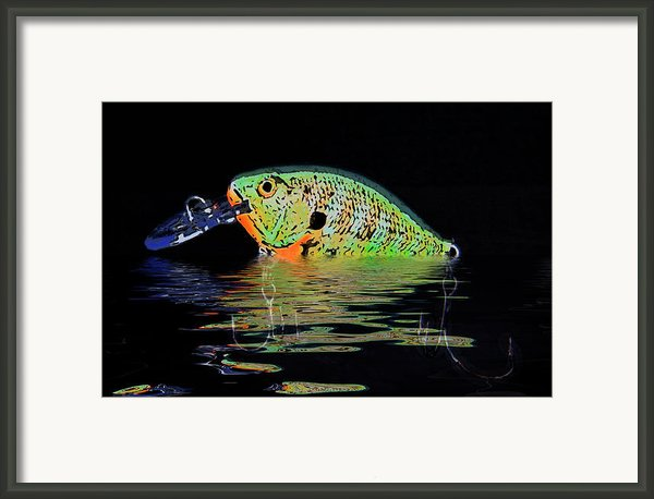 Crank Bait I Framed Print By Tom Mc Nemar