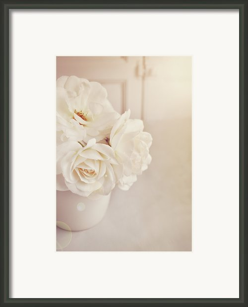 Cream Roses In Vase Framed Print By Photo - Lyn Randle