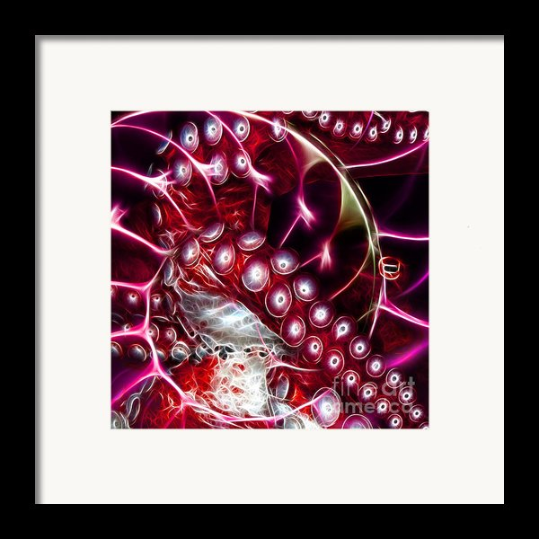 Creatures Of The Deep - Octopus Caught In The Swirl Of The Giant Nautilus - Electric - Square - Red Framed Print By Wingsdomain Art And Photography