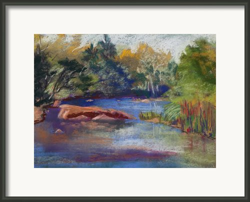 Creekside Framed Print By Diana Tripp