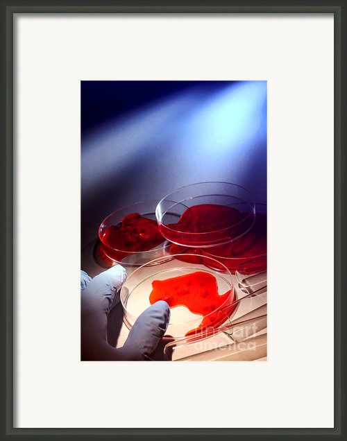 Crime Lab Framed Print By Olivier Le Queinec