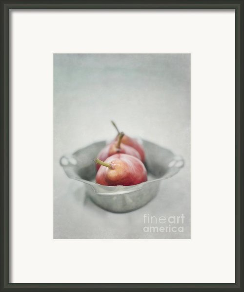 Crimson And Silver Framed Print By Priska Wettstein