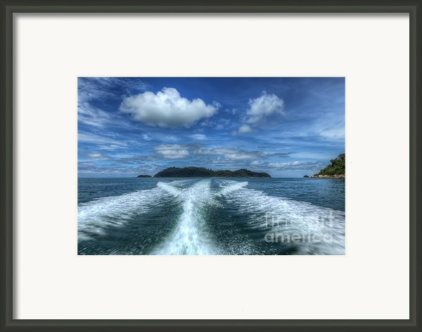 Cruising Framed Print By Adrian Evans