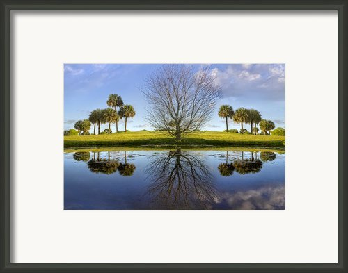 Crystal Waters Framed Print By Debra And Dave Vanderlaan