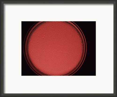 Crystalline Structure Framed Print By Andrew Lambert Photography