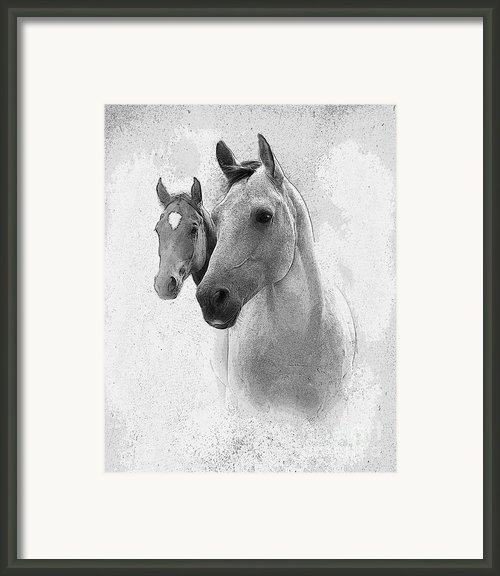 Curiosity Framed Print By Betty Larue