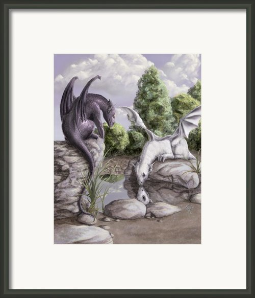 Curiosity Framed Print By Rob Carlos