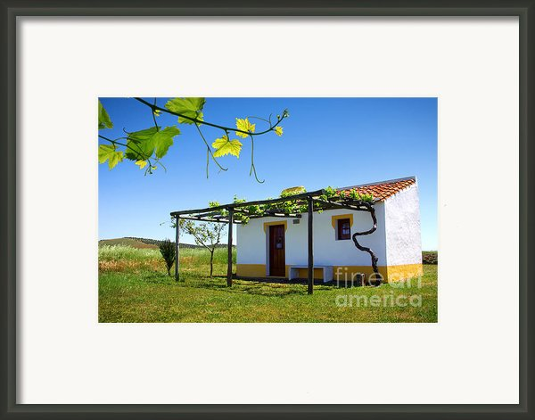 Cute House Framed Print By Carlos Caetano