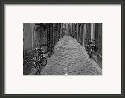 Cycle Lane Framed Print By Michael Avory