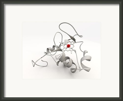 Cytochrome C Framed Print By Phantatomix