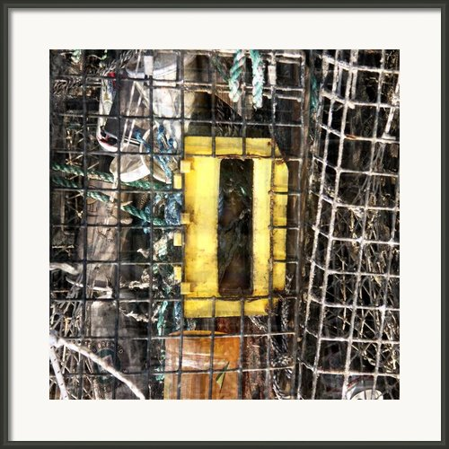 D Is For... Framed Print By Tom Romeo