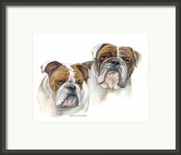 Dabullies Framed Print By Mamie Greenfield