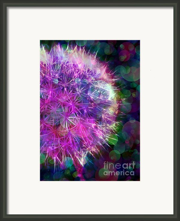 Dandelion Party Framed Print By Judi Bagwell