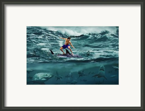 Dangerous Surf Framed Print By Alex Hardie