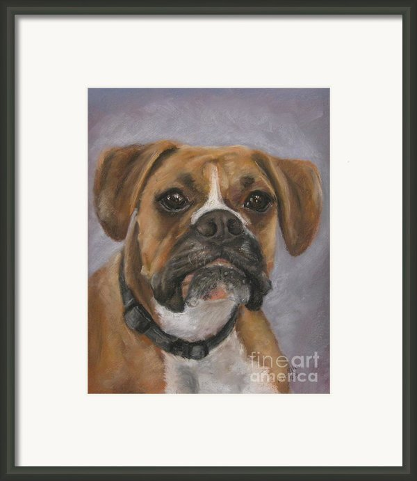 Dave Framed Print By Elizabeth  Ellis