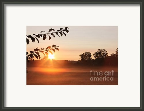 Dawn Of A Brand New Day  Framed Print By Cathy  Beharriell