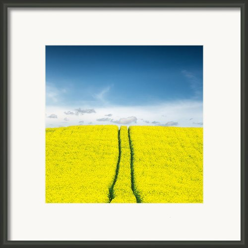 Daydreams Framed Print By Ian David Soar