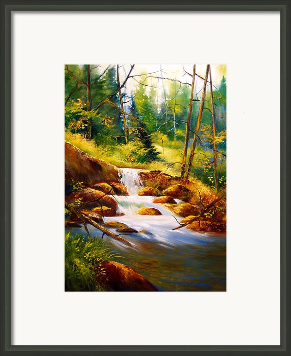 Deep Woods Beauty Framed Print By Robert Carver
