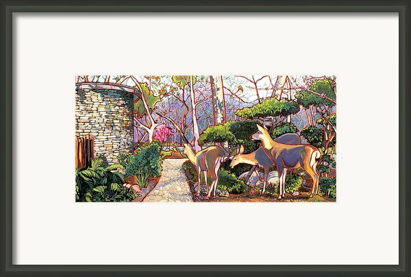 Deer In Baer Garden Framed Print By Nadi Spencer