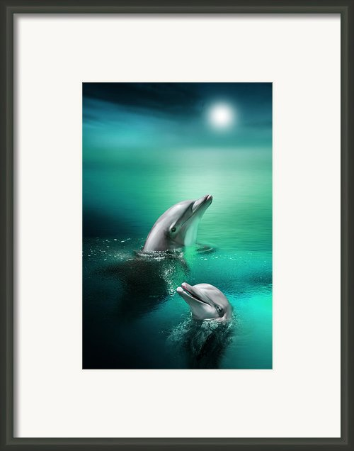 Delightful Dolphins Framed Print By Julie L Hoddinott