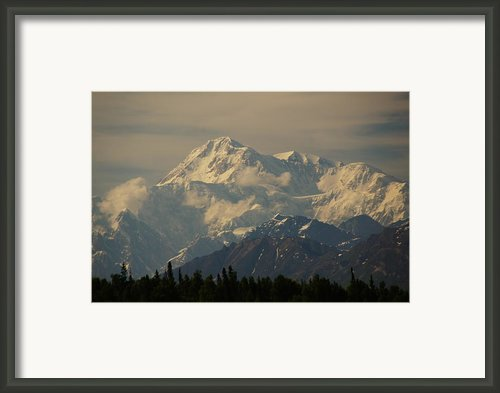 Denali      Great One Framed Print By Bj Hodges