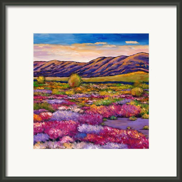 Desert In Bloom Framed Print By Johnathan Harris