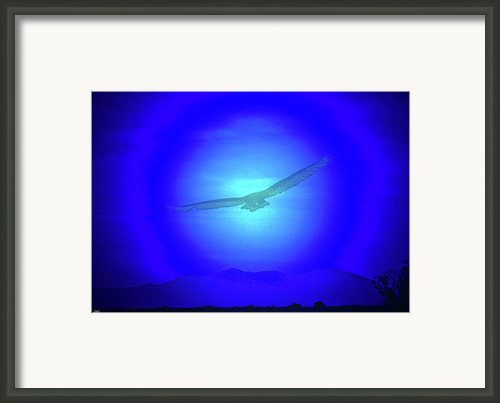 Desert Nights Framed Print By Debra     Vatalaro