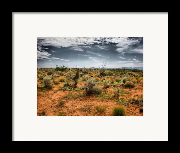 Desert Of New Mexico Framed Print By Thomas  Macpherson Jr
