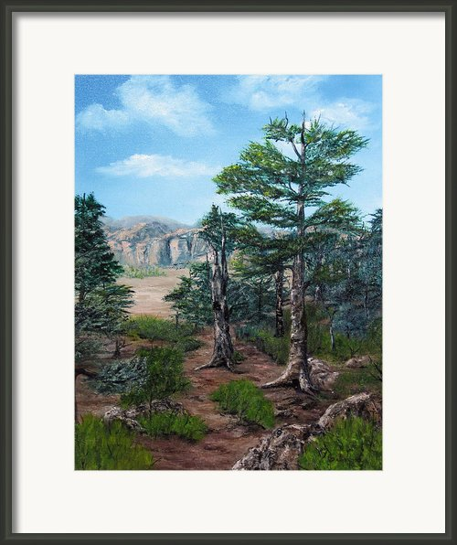Desert Overlook Framed Print By Roseann Gilmore