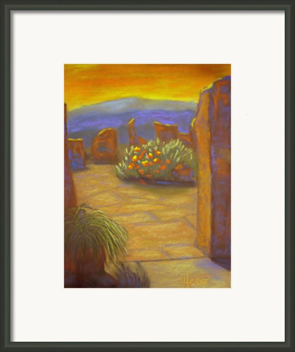 Desert Rose Framed Print By Marcia  Hero