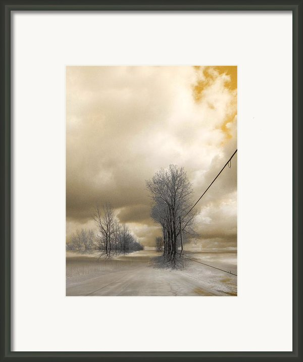 Desolate Framed Print By Elfriede Fulda