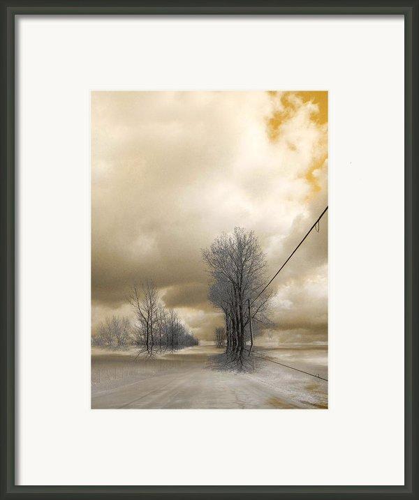 Desolate Framed Print By Elfriede Fulda