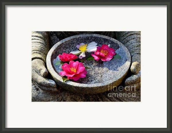Devotional Framed Print By Dean Harte