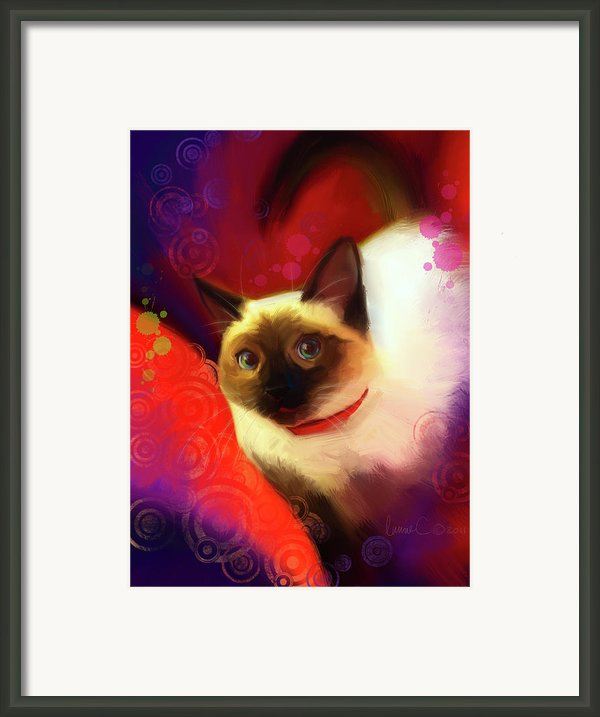 Dexter Framed Print By Laurie Cook