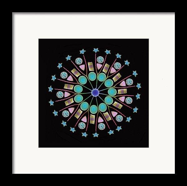 Diatom Assortment, Sems Framed Print By Steve Gschmeissner