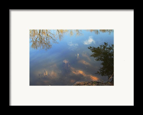 Different Worlds Framed Print By Karol  Livote