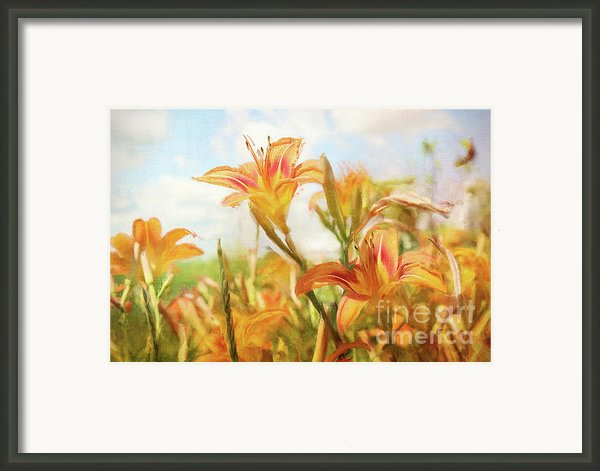 Digital Painting Of Orange Daylilies Framed Print By Sandra Cunningham