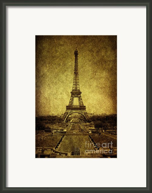 Dignified Stature Framed Print By Andrew Paranavitana