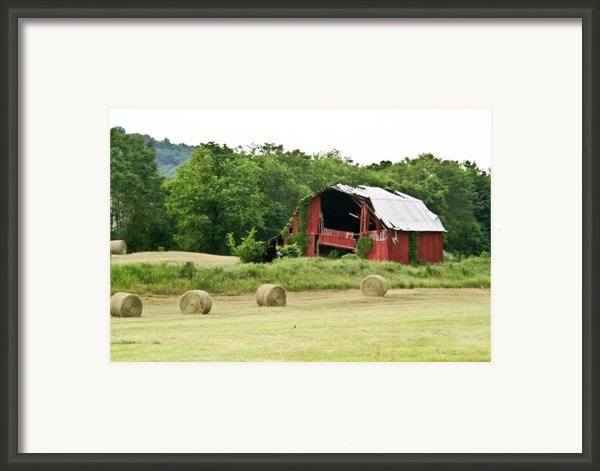 Dilapidated Old Red Barn Framed Print By Douglas Barnett