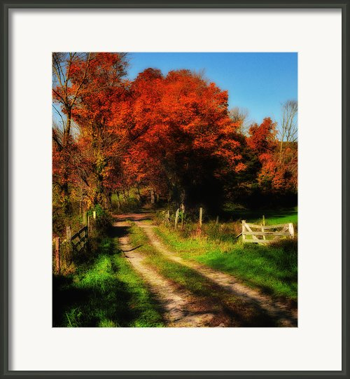 Dirt Road To Anyplace Framed Print By Thomas Schoeller