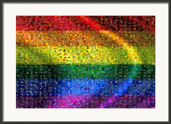 Diversity Framed Print By Gilberto Viciedo