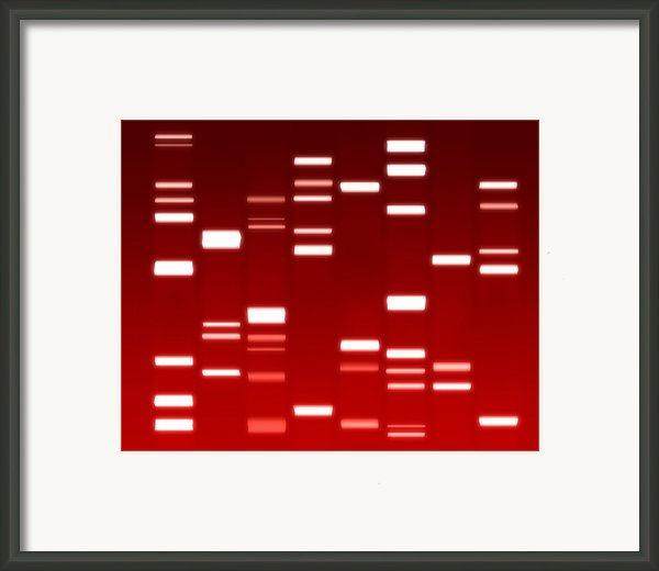 Dna Red Framed Print By Michael Tompsett