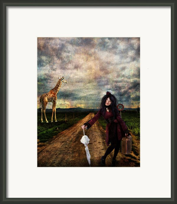 Do You Know The Way To San Jose Framed Print By Patricia Ridlon